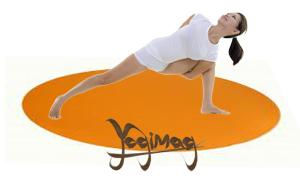 Les pratiques de yogas les plus courantes