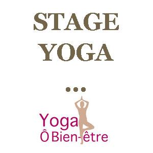 yogimag-stage-yoga-YP44