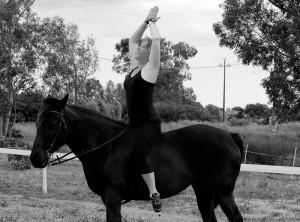 yogimag-cheval5