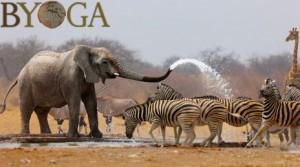 Byoga© matériel yoga ecologique