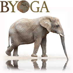 byoga© la marque Yoga France
