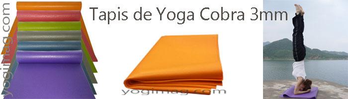Tapis De Yoga Fin Ou Tapis De Yoga épais Faire Son Choix Yogimag