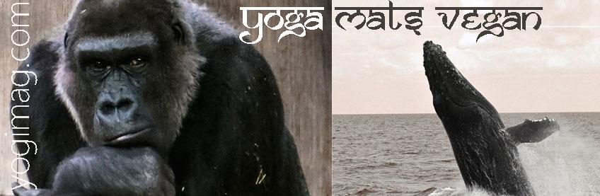 yoga mats vegan yogimag - C'est quoi être vegan dans le yoga ?