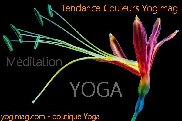 tendance couleurs yoga