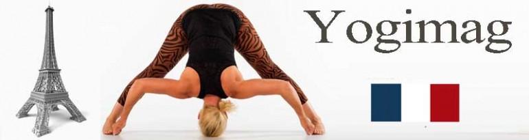 le yoga en france