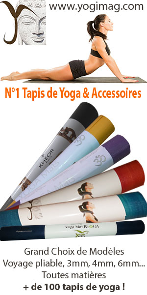 Les Festivals du yoga en 2018 en France - Yogimag a0e2ab828ac