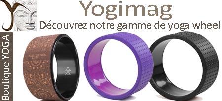 modèles yoga wheel