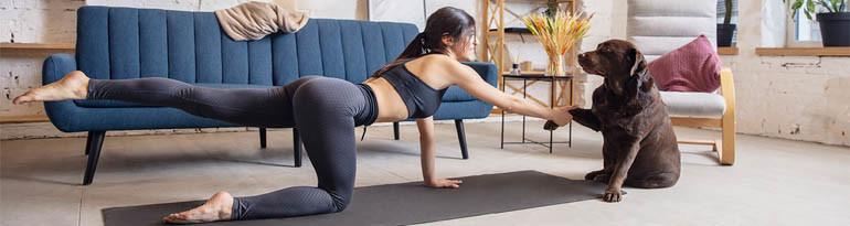 Yoga avec les animaux (chien, chat, chèvre, lémurien, alpaga)